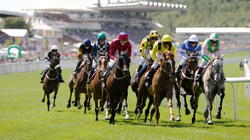 Glorious Goodwood Racing