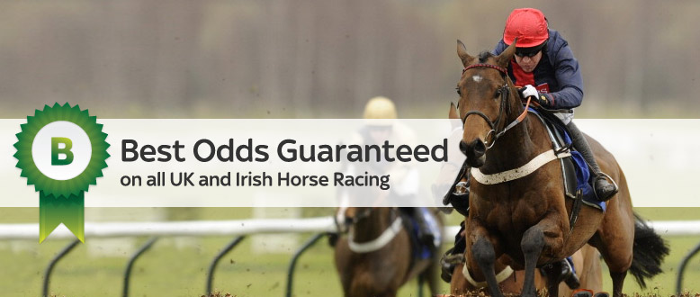 Best odds bet horse racing