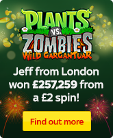 Plants VS Zombies Winner