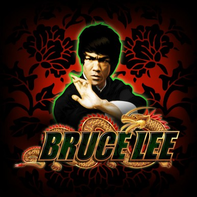 Bruce lee casino game